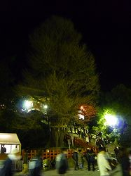 201001 030.jpg